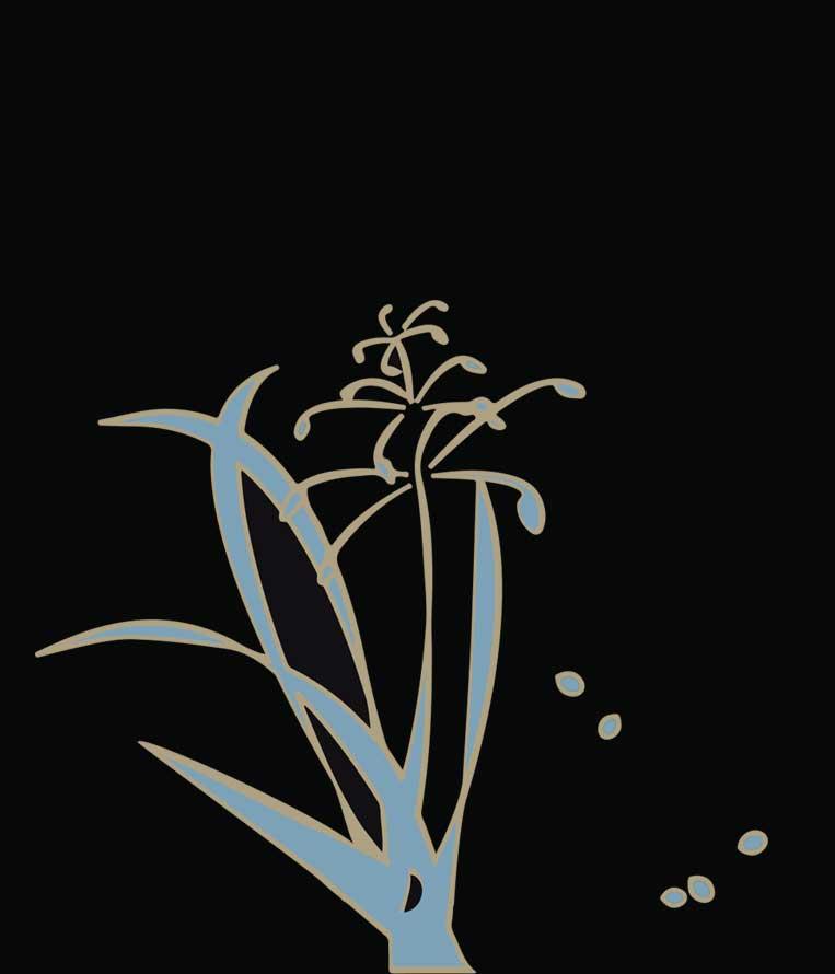 DROPSEED | Native Plant Nursery
